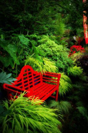 nature_photography_healdsburg_garden10.jpg