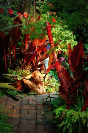 nature_photography_healdsburg_garden11.jpg