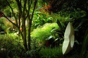 nature_photography_healdsburg_garden12.jpg