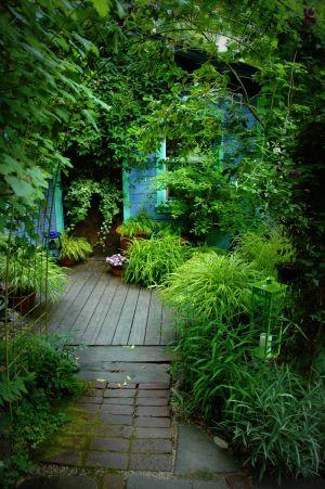 nature_photography_healdsburg_garden6.jpg