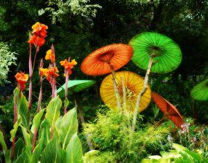 nature_photography_healdsburg_garden8.jpg