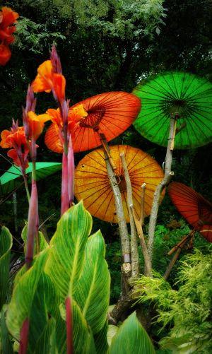 nature_photography_healdsburg_garden9.jpg