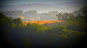 nature_photography_healdsburg_sonoma_county1.jpg