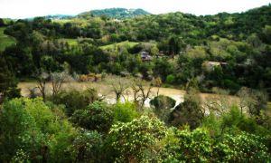 nature_photography_healdsburg_sonoma_county2.jpg