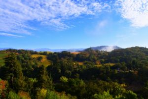 nature_photography_healdsburg_sonoma_county3.jpg