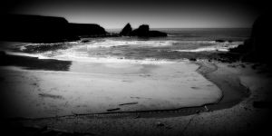 nature_photography_healdsburg_coast2.jpg