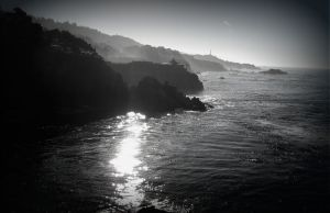 nature_photography_healdsburg_coast4.jpg