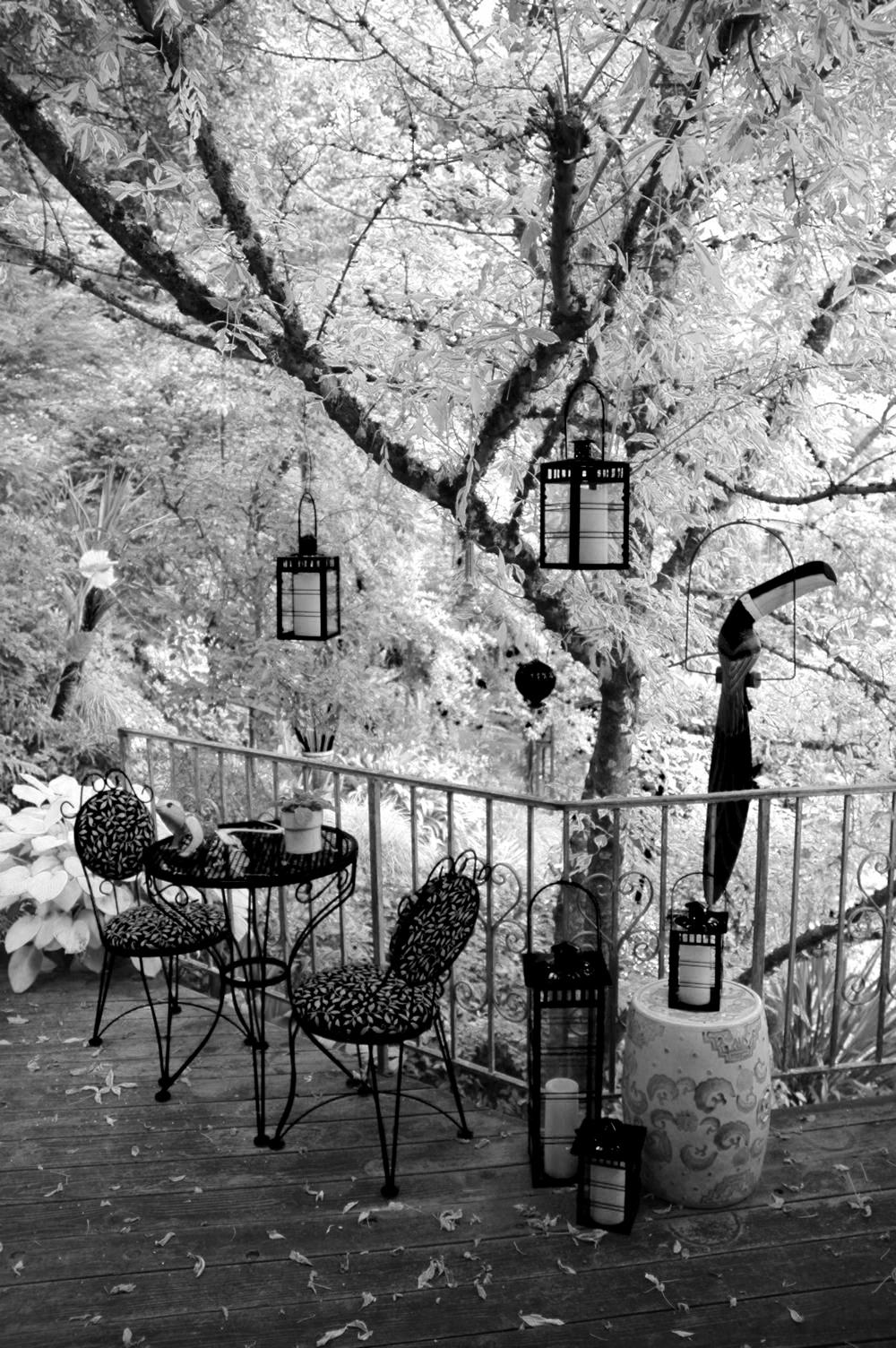 black white gardens. Black Bedroom Furniture Sets. Home Design Ideas